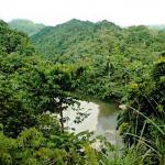 Cuba Parc National Humboldt
