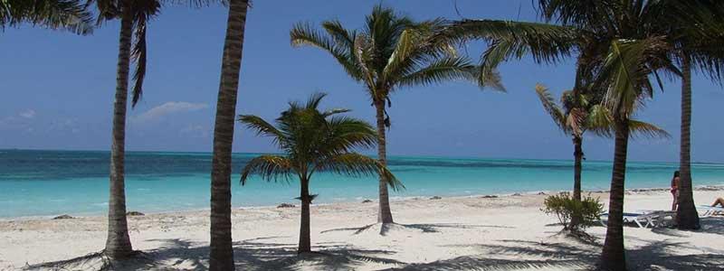 cayo levisa et sa plage de sable blanc et ses palmiers